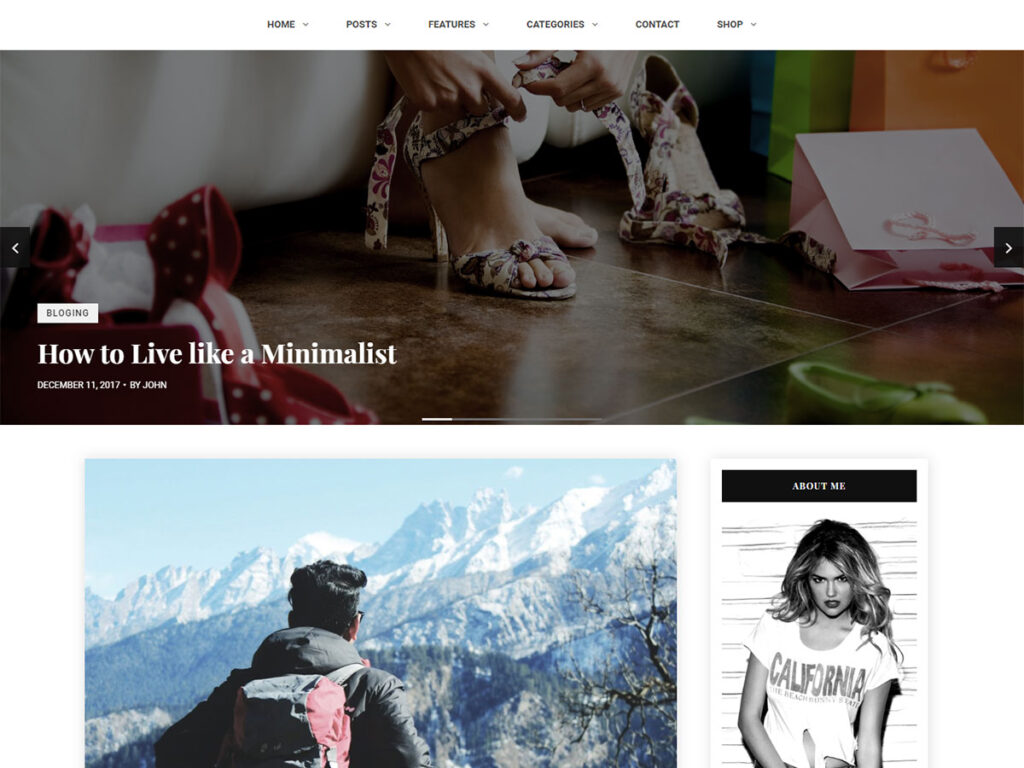 Shasha - Informational Website Templates