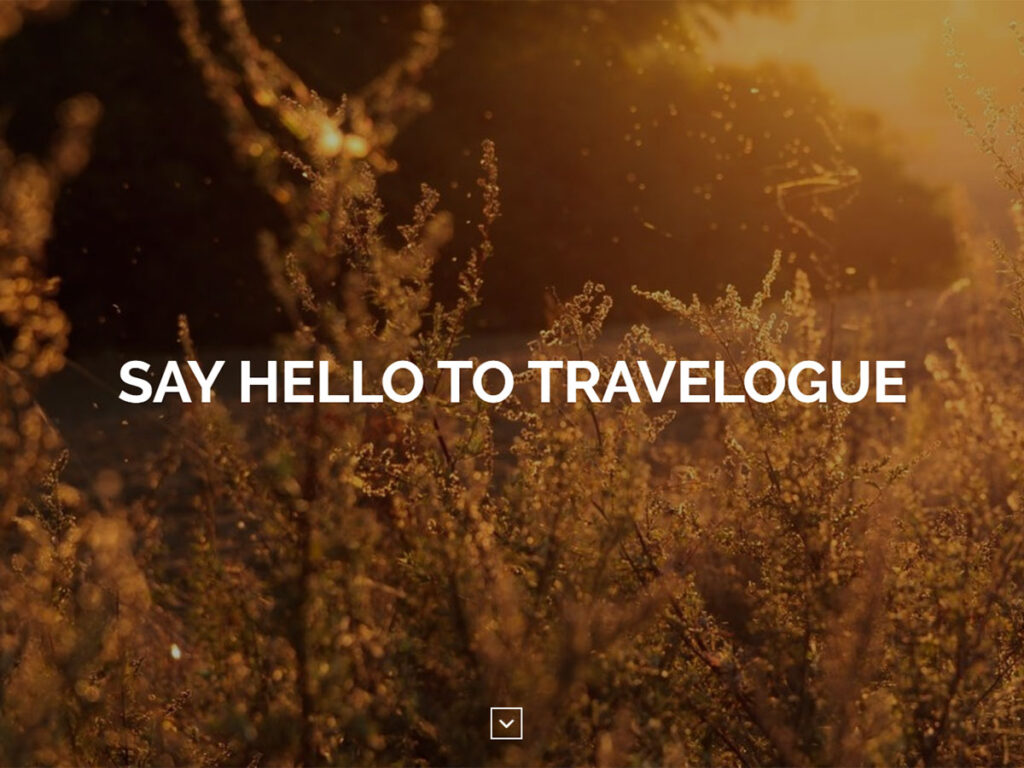 Travelogue - Informational Website Templates